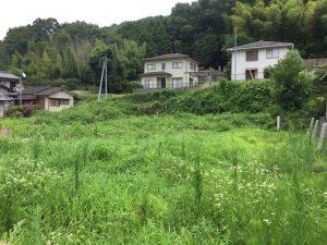 SPI15号機予定地の草刈りと測量,草刈り前